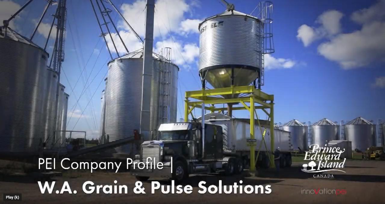 W.A. Grain & Pulse Solutions